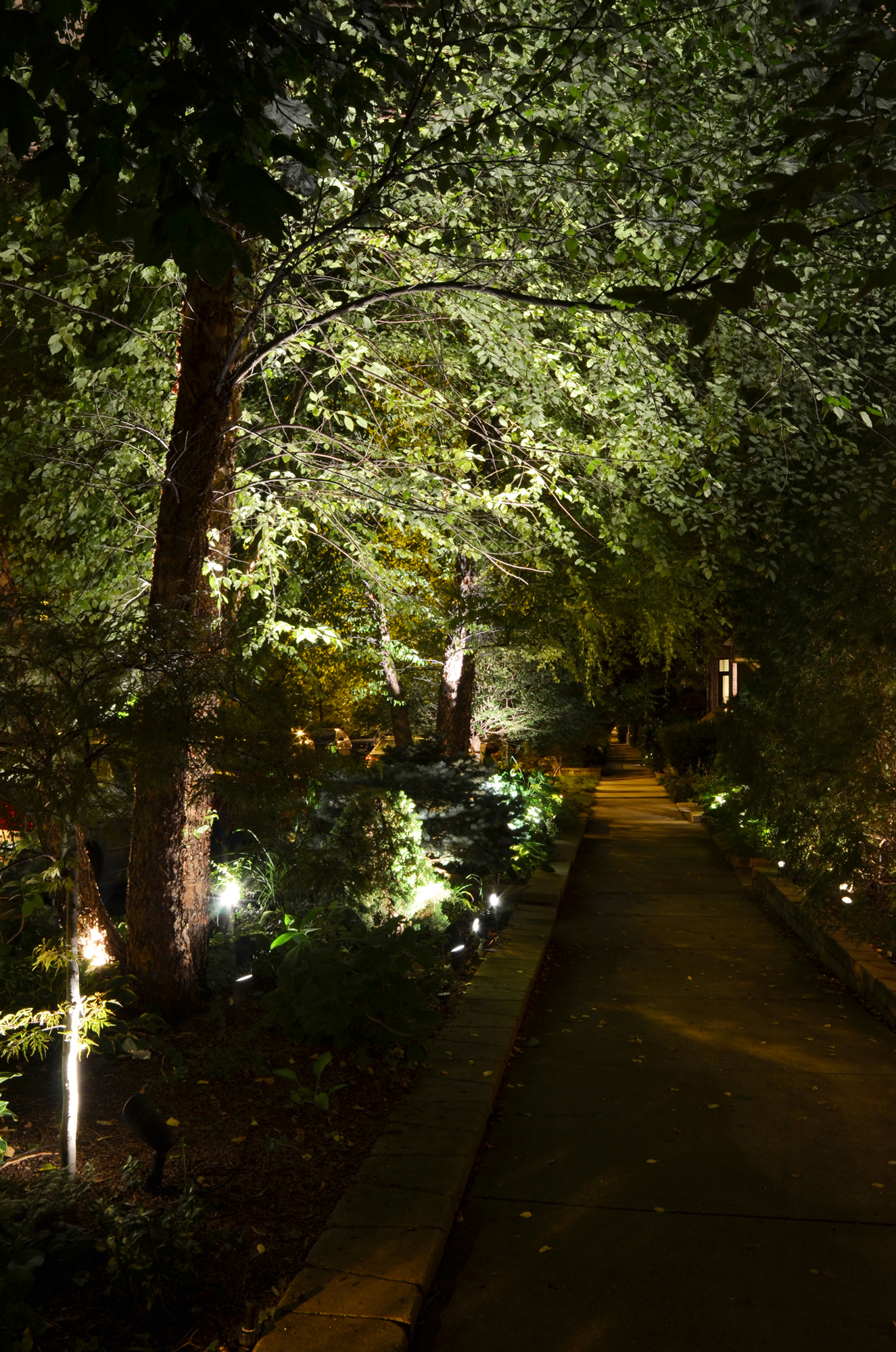 How To Landscape Lighting Exterior Landscape Lighting