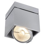 Kardamod AR111 Ceiling Light