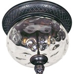 Carriage House VX Outdoor Ceiling Mount