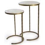 Bone Veneer Nesting Table - Brass / Bone Tile