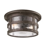 Barbosa Flush Mount - Bronze / Clear