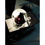 POC Table Lamp - Satin Nickel / Black