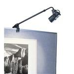 DL-007 Low Voltage Display Light - Black /