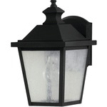 Woodside Hills Small Wall Lantern - Black / Clear Seeded