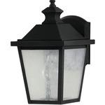 Woodside Hills Small Wall Lantern - Black / Clear Seeded