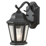 Martinsville Small Outdoor Wall Sconce - Black / Clear Seeded