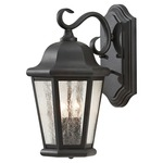 Martinsville Outdoor Wall Sconce - Black / Clear Seeded