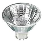 Bulbs, Lighting Accessories and Home Decor by Ushio America Inc.