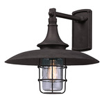 Allegany Dark Sky Outdoor Wall Sconce