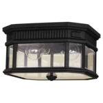 Cotswold Lane Outdoor Ceiling Light Fixture - Black / Clear Beveled /