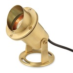 Accent Submersible Pond Light - Brass /