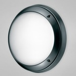 Onda Wall / Ceiling Mount  - Black / Frosted