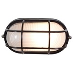 Nauticus Outdoor Wall / Ceiling Light - Black / Frosted