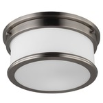 Payne Ceiling Light Fixture - Brushed Steel / White Opal