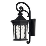 Raley Outdoor Wall Light - Museum Black / Clear Water Glass