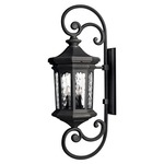 Raley Outdoor Curly Wall Light