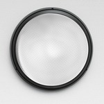 Pantarei 300 1X26W FLU Outdoor Wall/Ceiling Light