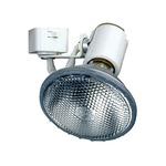 CTL602 Line Voltage PAR Universal Lampholder Track Fixture - White /