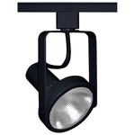 T363 PAR30 Open Back Track Fixture 120V - Black /