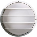 Cage 10 inch Round Outdoor Wall Sconce