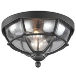 River North Outdoor Flush Mount