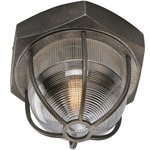 Acme Ceiling Flush Mount