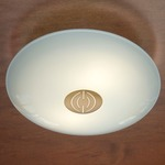 Series 3500 Wall/Ceiling Light - Decorative Antique Brass / Satin White