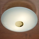 Series 3500 Wall/Ceiling Light - Decorative Polished Brass / Satin White
