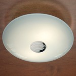 Series 3500 Wall/Ceiling Light - Decorative Polished Nickel / Satin White