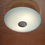 Series 3500 Wall/Ceiling Light - Solid Hand Brushed Old Bronze / Satin White
