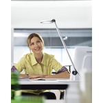 Para MI Round Single Arm Desk Lamp - White
