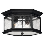 Edgewater Outdoor Ceiling Light Fixture - Black / Clear Seedy