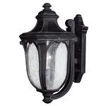 Trafalgar Outdoor Wall Light - Museum Black / Clear Seedy
