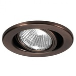 Low Voltage 2.5IN Adjustable Trim - Copper Bronze / Clear