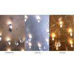 Crystal Rain Rectangular Ceiling Mount - Silver Leaf / Crystal