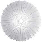 Muse Wall / Ceiling Mount - White / White