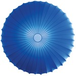 Muse Wall / Ceiling Mount - White / Dark Blue