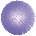 Muse Wall / Ceiling Mount - White / Violet