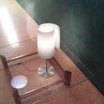 Diane T1 Table Lamp - Satin Nickel / Satin White