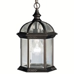 Barrie Outdoor Pendant - Black / Clear
