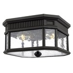 Cotswold Lane Outdoor Ceiling Light Fixture - Black / Clear Seeded /