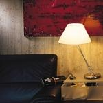 Liz Table Lamp W / Cone Shade -  /