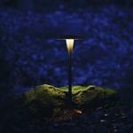 Landscape Area Light -