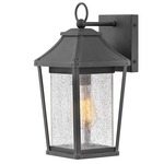 Palmer Outdoor Wall Light - Museum Black / Clear Seedy