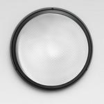 Pantarei 390 2X26W FLU Outdoor Wall/Ceiling Light