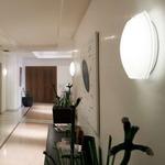 Clara Open Glass Wall Sconce - White / Opal