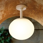 Elipse Outdoor Ceiling Light - White / White