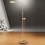 6317 Side Line Dimmer Reading Floor Lamp - Brushed Brass /