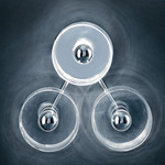 Fiore 103 Wall or Ceiling Light - Chrome / Transparent