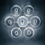 Fiore 173 Wall or Ceiling Light - Chrome / Transparent